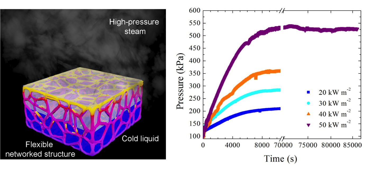 Flexible artificially networked structure for ambient/high pressure solar steam generation